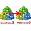 MT5->MT5 Copier