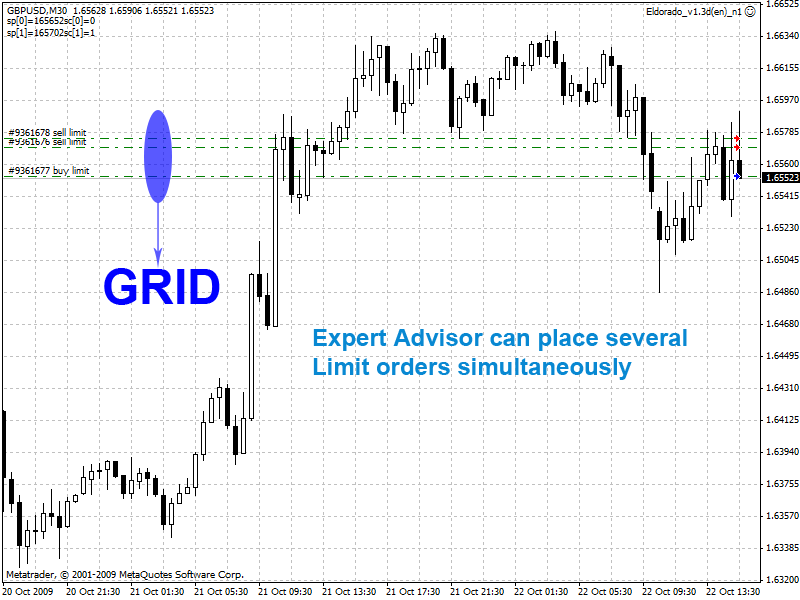 Forex grid master review