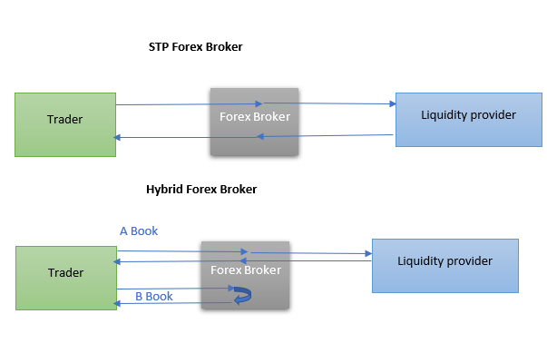 STP and Hybrid Forex Brokers